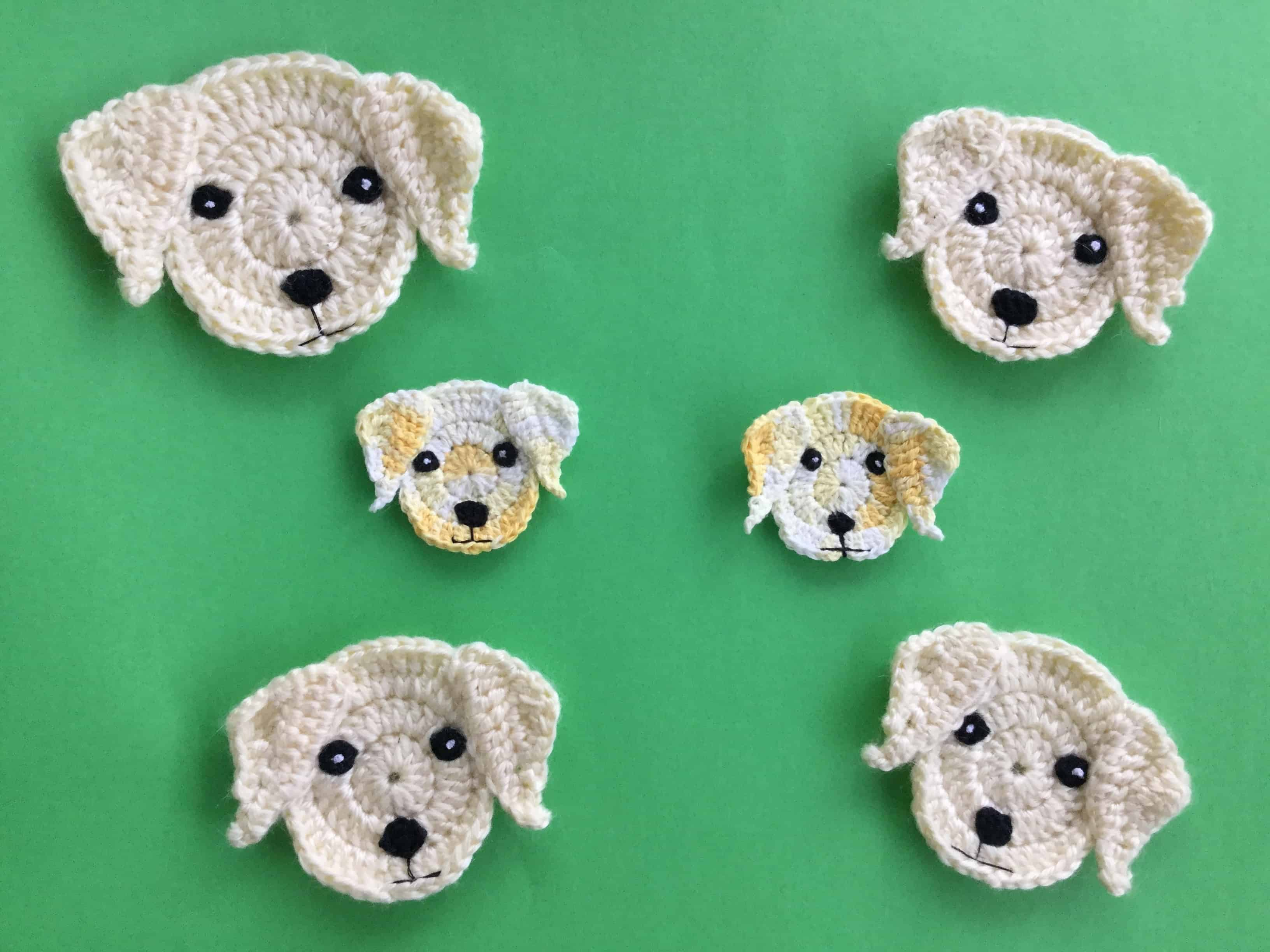 Finished crochet Labrador head group landscape