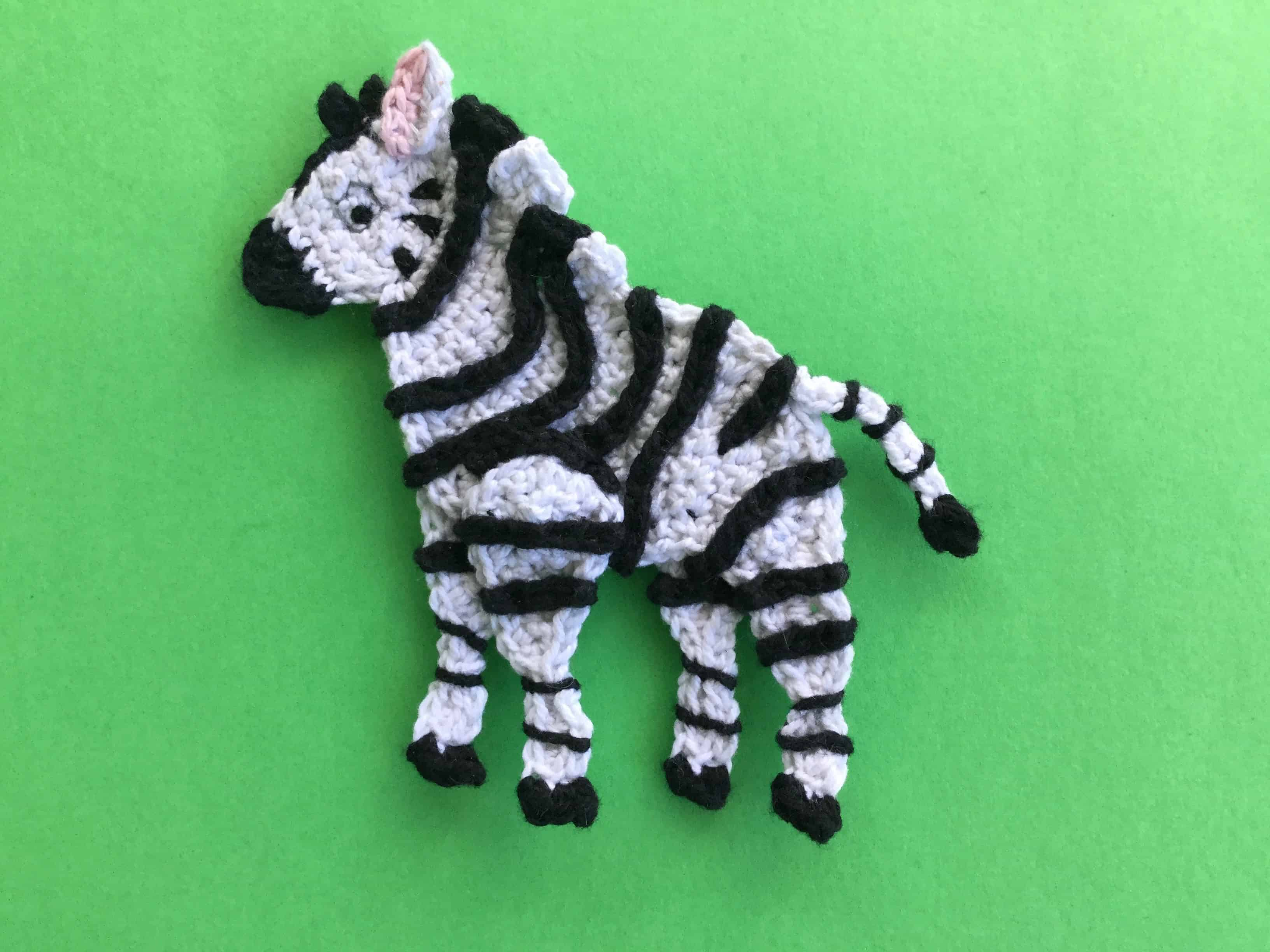 Finished crochet zebra landscape